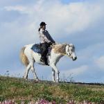 反り腰にならない背筋の伸ばし方|乗馬をしたら腰が筋肉痛